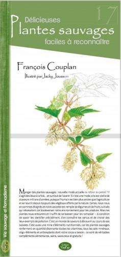 délicieuses plantes sauvages facile à reconnaître françois couplan ypypyp